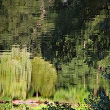 Free Pond Reflection. Royalty Free Stock Photography - 21227637