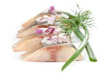 Free Salt Fillet Herring Royalty Free Stock Images - 21228199