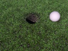 Free Golf Ball On Green Royalty Free Stock Photo - 21228695