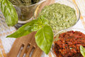 Free Pesto Royalty Free Stock Photo - 21235615