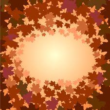 Frame Of Maple Foliage Stock Photography