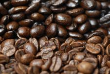 Free Decaffinated And Caffinated Coffee Beans. Royalty Free Stock Photography - 21232547