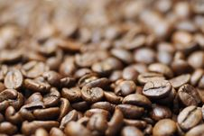 Free Macro Image Of Decaffinated Coffee Beans. Stock Image - 21232591