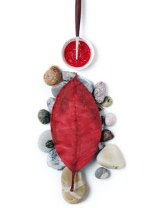 Stones, Red Leaf And Brush Stock Photos