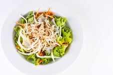 Chicken Salad3 Stock Image