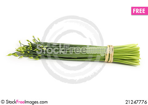 Free Bunch Chives Royalty Free Stock Image - 21247776