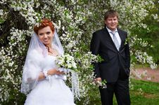 Free Happy Bride And Groom In Cherry Garden Royalty Free Stock Photography - 21242007