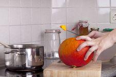 Cooking  Hokkaido  Pumpkin Soup Stock Photography