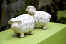 Sheep Dool On Green Stock Photo