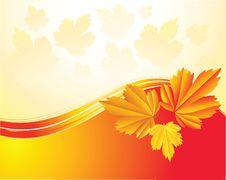 Free Autumn Leaves Stock Image - 21244511