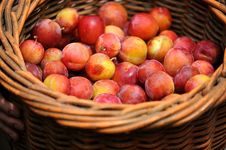 Free PLUMS Stock Image - 21245611