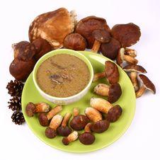Free Mushroom Soup Royalty Free Stock Image - 21247376