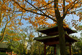Free Autumnal Chinese Temple Stock Photo - 21250250