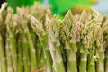 Free Asparagus Stalks Royalty Free Stock Image - 21257646
