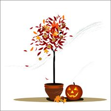 Free Halloween Decoration Vector Illustration Stock Images - 21251144