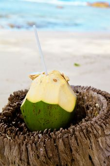Free Fresh Coconut Stock Photos - 21257913
