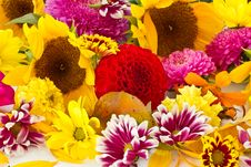 Free Background Of The Flowers Stock Image - 21258961