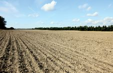 Free Plowed Field In Wide Angle Royalty Free Stock Photos - 21259758