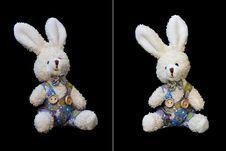 Free Teddy Rabbit Stock Photo - 21259760