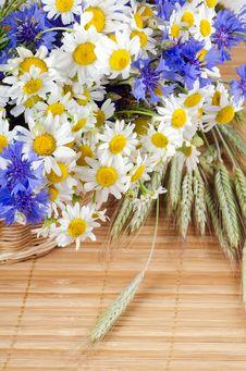 Free Beautiful Flowers Stock Photography - 21260422