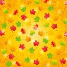Free Autumn Background Royalty Free Stock Photo - 21261955