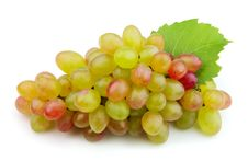 Free Fresh Grapes Royalty Free Stock Photography - 21262507