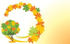 Free Autumn Background With Maple Tree. Banner Stock Photography - 21262892