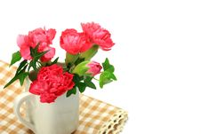 Free Carnation And Ivy Stock Photos - 21263473