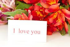 Free I Love You Royalty Free Stock Image - 21263736