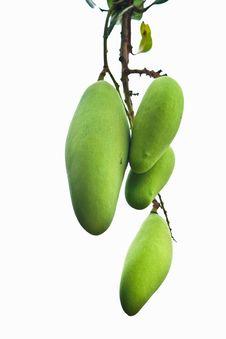 Free Mango Fruit Isolate On White Royalty Free Stock Photo - 21267005
