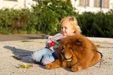 Free Beautiful Girl With The Dog Stock Photography - 21267492