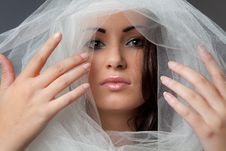 Free Beautiful Woman S Face Surrounded By Tulle Fabric Stock Photos - 21267663