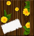 Free Wooden Background With Green Leaves Royalty Free Stock Photo - 21272835