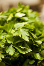 Free Parsley Stock Images - 21273634