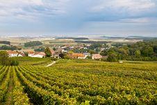 Free Vineyards Stock Image - 21270521
