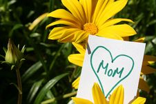 Free Happy Mothers Day Stock Image - 21270591