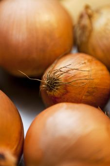 Free Onion Royalty Free Stock Photography - 21273707