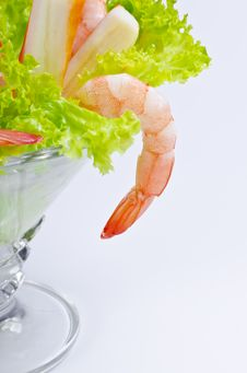 Free Shrimp Salad Stock Photos - 21273983