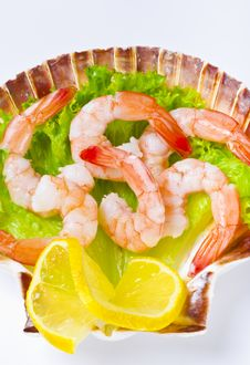 Free Shrimp Salad Stock Photos - 21274083