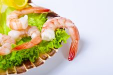 Free Shrimp Salad Stock Photography - 21274182
