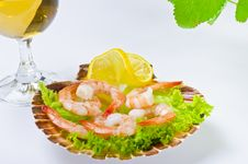 Free Shrimp Salad Royalty Free Stock Photo - 21274245