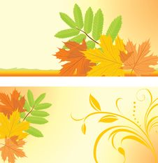 Free Autumn Banners With Maple And Ash Leaves Stock Photos - 21278033