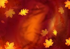 Free Abstract Autumn Design Stock Image - 21279351