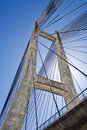 Free Cable-stayed Bridge In Barrios De Luna Stock Photography - 21284432