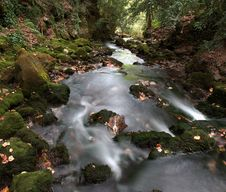 Free Pyrenees River Stock Images - 21281104