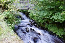 Free Wahkeena Waterfall Oregon Royalty Free Stock Photos - 21283548