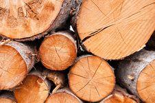 Free Cut Logs Royalty Free Stock Photos - 21284188