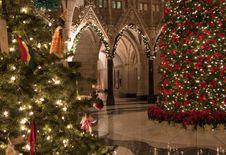 Free Christmas Rotunda Stock Photography - 21284252