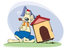 Free Dog, Home Guard Royalty Free Stock Photo - 21285275