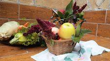 Free Autumn Stock Photos - 21285403